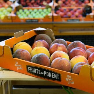Caixa amb fruita de pinyol combinada: nectarina, prèssec vermell, prèssec groc i paraguià