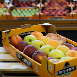 Caixa amb fruita de pinyol combinada: poma, prèssec groc i paraguià